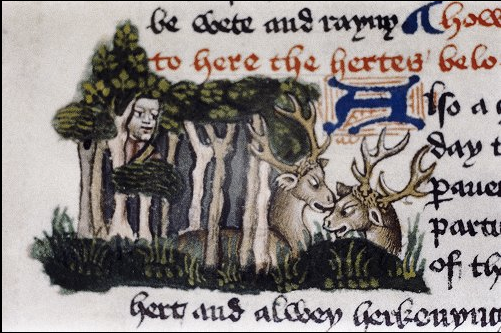 Oxford, Bodleian Library MS Douce 335, f. 57r (detail). From 'The Master of Game'.